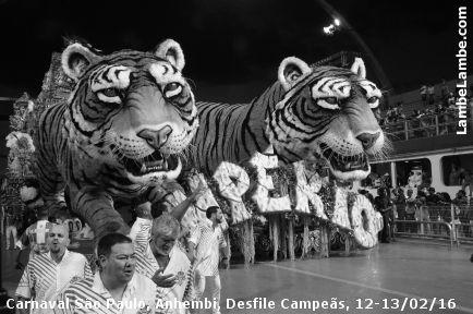 Carnaval São Paulo, Sambódromo Anhembi, Desfile das Campeãs