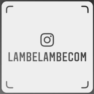 Instagram LambeLambeCom Tag de Nome